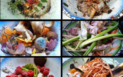 Afval of verspilling? Trots op onze nieuwe foto's over voedselverspilling van Harry Smittenberg